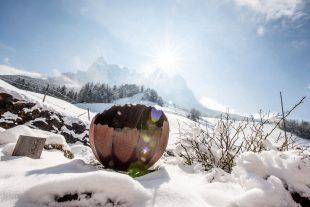 Weiße Wochen im Winter am Örtlhof